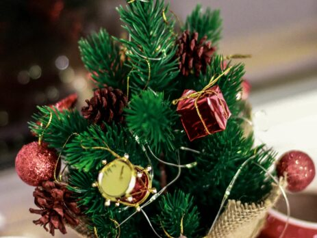 balooworld.ca - article - decor christmas tree